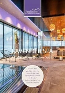 thumbnail of Prospekt Spa – 2019 (E)